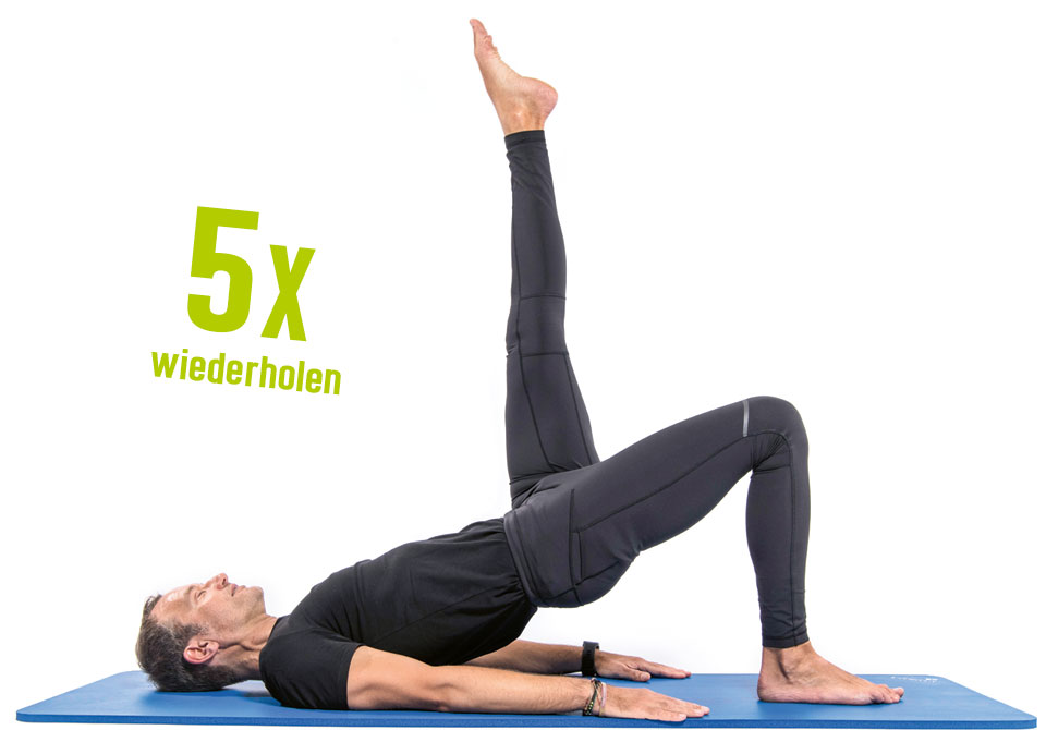 shoulder bridge variation - Teil 3: SHOULDER BRIDGE