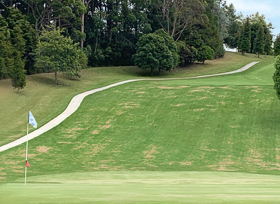 Golfplatz Bay of Island, Neuseeland