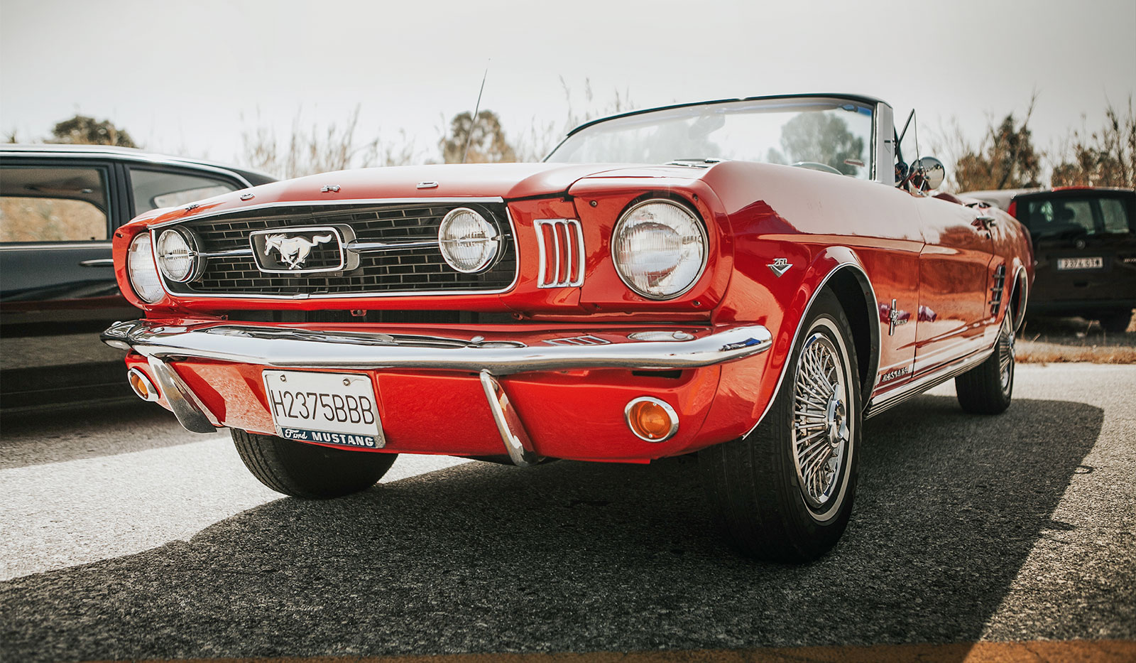 roter Mustang