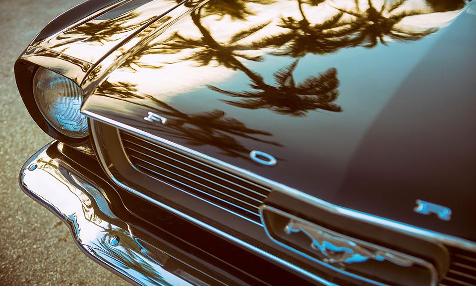 Palmen spiegeln sich in Motorhaube vom Mustang
