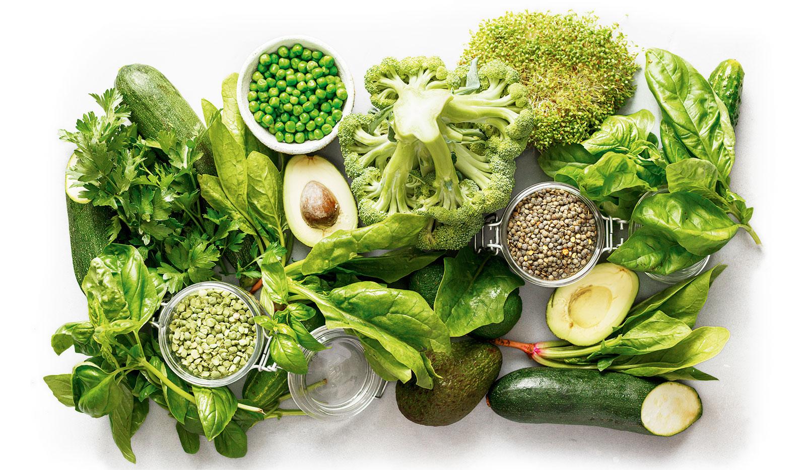Proteine Aufmacher - Grüne Proteine  – Fitter in den Sommer starten