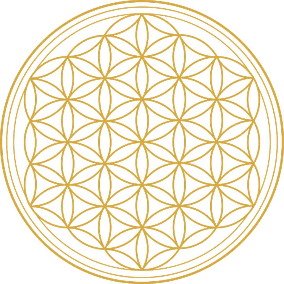 Symbol Blume des Lebens