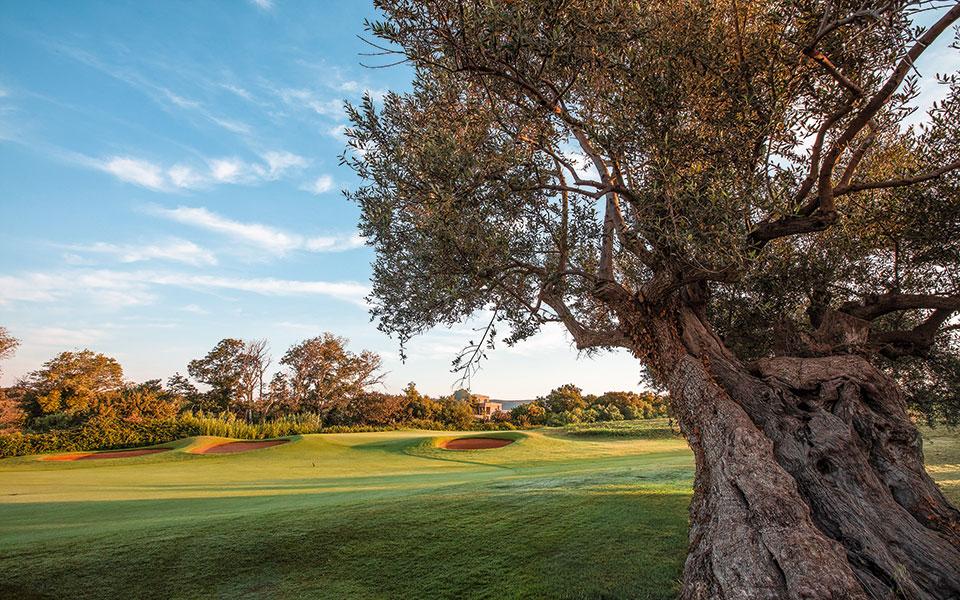 Costa Navarino Golfplatz