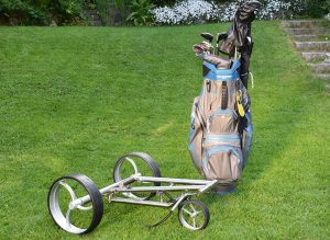 """Parccurate """"Kingfisher"""" Trolley"""
