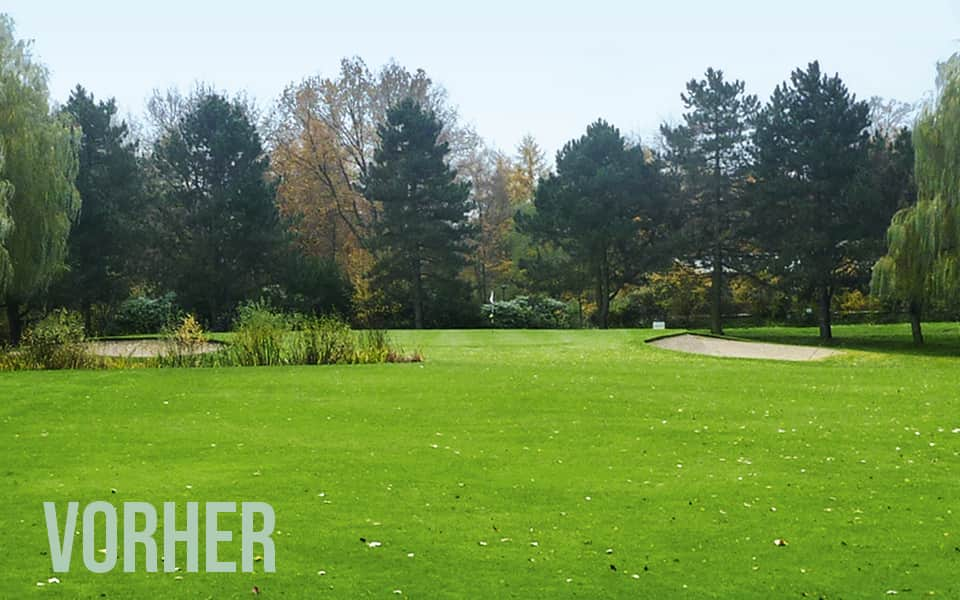 Golfplatz vor Redesign
