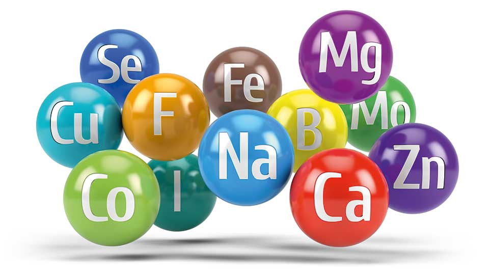 Aufzählung Mineralstoffe